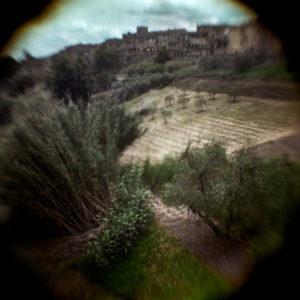 Abel Bourgeois, photographie à chambre et lentille à eau, paysage de Toscane, sélection galerie d'art Virginie Baro