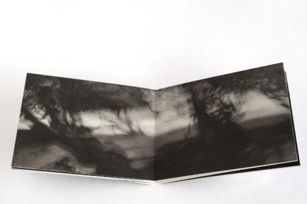 Luc Médrinal, livre d'artiste composé de photographies montées sous Leporello contenu dans une pochette et rassemblant 6 photos, irage jet d'encre, encres pigmentaires sur papierTecco, pochette en papier cristal, une sélection de la galerie d'art Virginie Baro