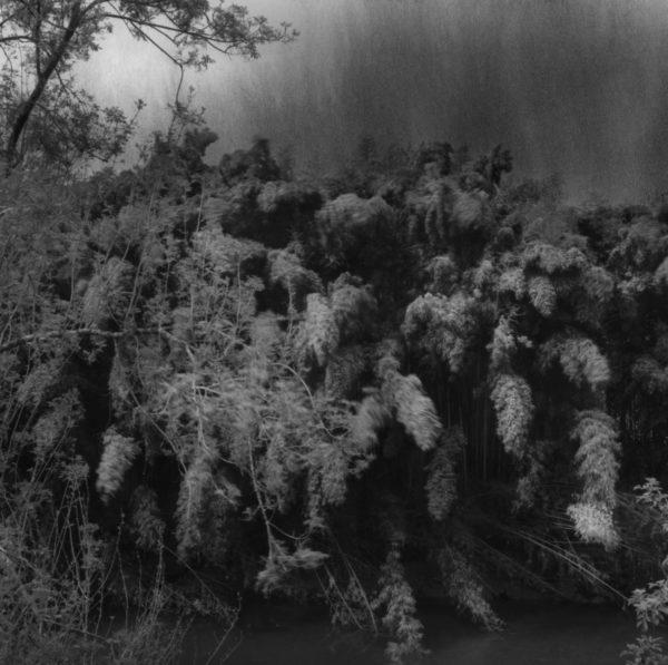 Luc Médrinal photographie de la série «Vu d'ici», paysage de la commune de Bardos, tirage jet d'encre, encres pigmentaires sur papierTecco Baryté, photo signée et numérotée sur 20 exemplaires, une sélection de la galerie d'art Virginie Baro