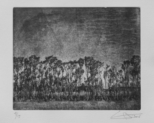 Luc Médrinal livre d'artiste «Terres brûlées I» se présente sous la forme d'une boîte en carton craft et craft gommé rassemblant 7 photogravures, tirage en photogravure au photopolymère, encre aqua intaglio, une sélection de la galerie d'art Virginie Baro
