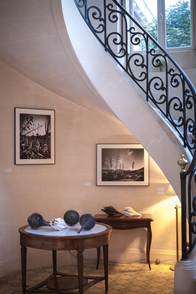 Exposition collective de 11 artistes plasticiens à l'Hôtel Château Le Clair de Lune à Biarritz. Vente d'œuvres d'art. Commissariat d'exposition Virginie Baro.