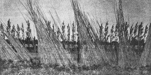 Photogravure de paysage en noir et blanc par Luc Médrinal, galerie d'art Virginie Baro