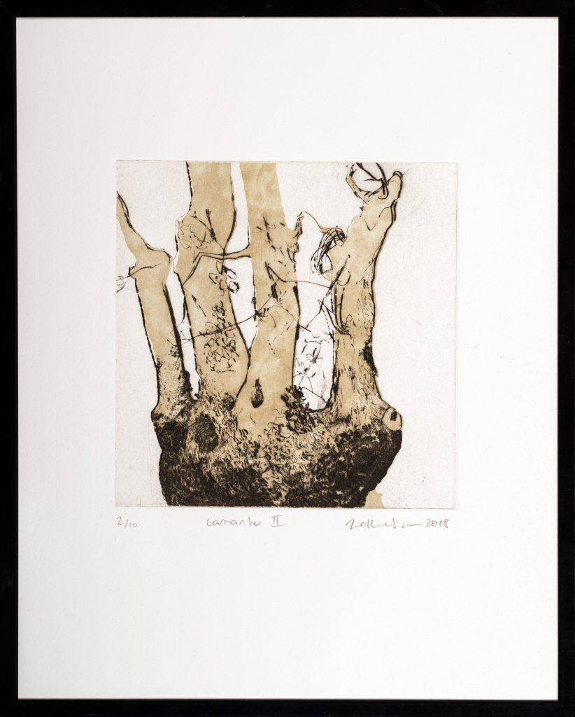 Gravure de trogne ou arbre têtard, hommage aux tailles d'arbre paysannes par Jana Lottenburger, représentée par Virginie Baro