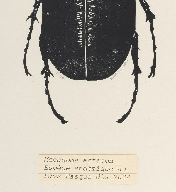 Linogravure sur papier journal, Jana Lottenburger, représentée par la galerie Virginie Baro